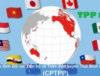cptpp brings vietnam direct economic benefits