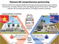 vietnam nz comprehensive partnership