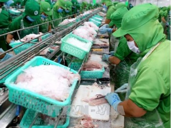 us antidumping duties on vietnams frozen fish fillets unfair ministry