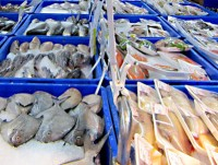 seafood exports up nearly 8 in first quarter