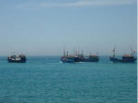 vietnam resolutely opposes chinas decision on east sea fishing break
