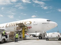 emirates boosts exports from vietnam to uae