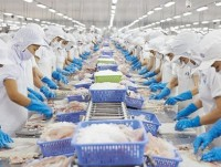 vietnams seafood makes great strides for removal of eu yellow card