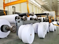 paper sector unfolds into domestic market
