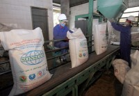 sugar prices high despite imports