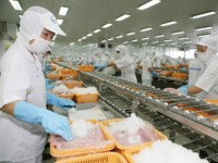 vietnam must commit to us food safety modernization act