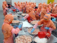 vietnam becomes largest shrimp provider in rok