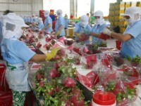 ministry optimistic about fruit veggie export prospects