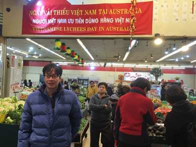 over 10 tons of lychees shipped to australia