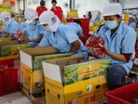 vietnam hoped to become eus largest trade partner in asean