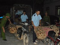 lang son smuggling and illegal trafficking of poultry returns as a hot issue