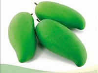 first images of vietnam mangoes in australia