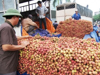 exports to china on sharp rise in 8 months
