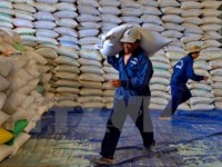 rice exporters advised to diversify markets