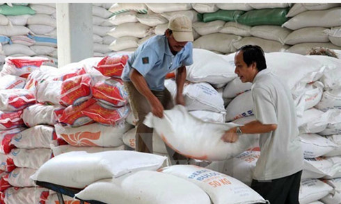 vietnam suspends rice exports to us after pesticide violations
