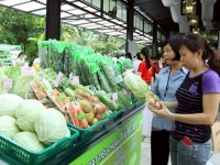 global cold chain to grow 7 annually through 2020