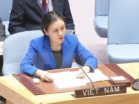 ambassador highlights vietnams stance in disarmament nuclear non proliferation