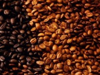 coffee exports down in volume up in value