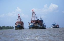 Vietnam's border guards take tougher actions against IUU fishing