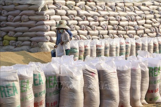 136,000 tonnes of rice allocated to pandemic-hit localities
