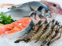 seafood exports to hit us 8 billion this year