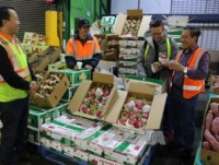 workshop seeks to enhance exports of vietnam agri products