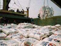 rice exports hit almost us 25 billion