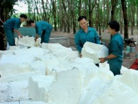 financial violations imperil rubber firms ipo