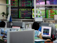 vietnam stock index jumps to 10 year high