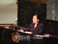 vietnam calls for uns comprehensive strategy to maintain peace