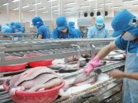 responses to incorrect and defamatory information on tra fish bred in the cuu long mekong river