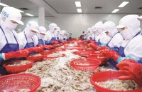 viet nam seafood exports endless obstacles