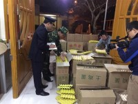 repeatedly arrest many case of smuggled eggs from china