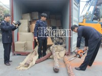 que vinh company imported 20m3 palo santo without cites certificate at dinh vu port