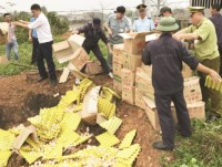 quang ninh customs strictly control smuggled foods