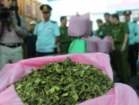 discover tons of khat leaves inside imported container