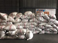 discover 33 tons of pangolin scales in the shipment of cashew
