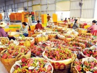 the agriculture sector is confident to export the whole year to us 405 billion