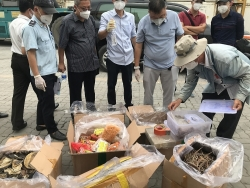 HCM City Customs discovers hundreds of boxes of smuggled goods disguised as blood cockles