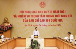 Deputy Prime Minister Pham Binh Minh: Need to proactively fight against smuggling at the end of the year