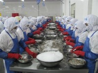 would seafood export reach us 8 billion