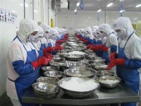 seafood export enterprises joined eaeu will be inspected