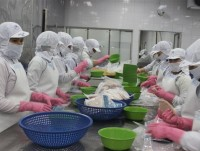 china continue to be potential market for vietnams seafood exportation
