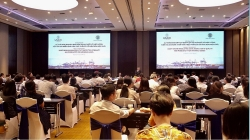 Consulte enterprises on draft decree on quality inspection and food safety inspection